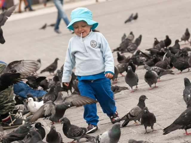 Among the pigeons at Krakow Main Square