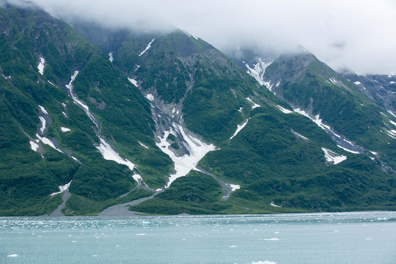 Greenery and snow on Hubbard Glacier