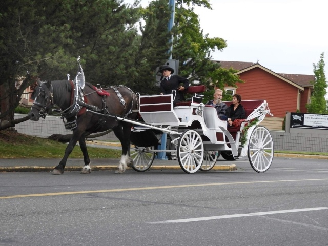 Horse-drawn carriage in Victoria