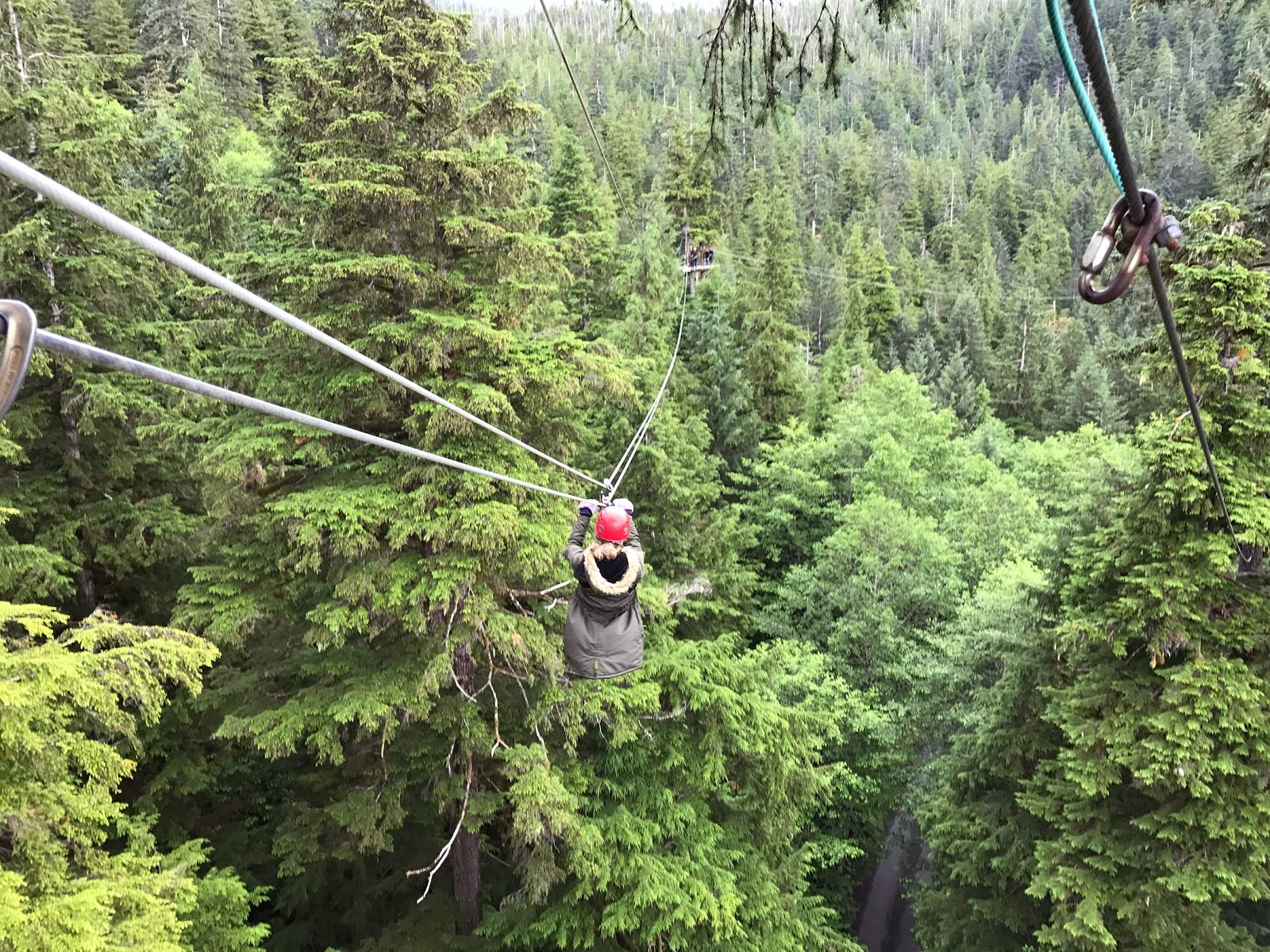 Ziplining through rainforest in Ketchikan