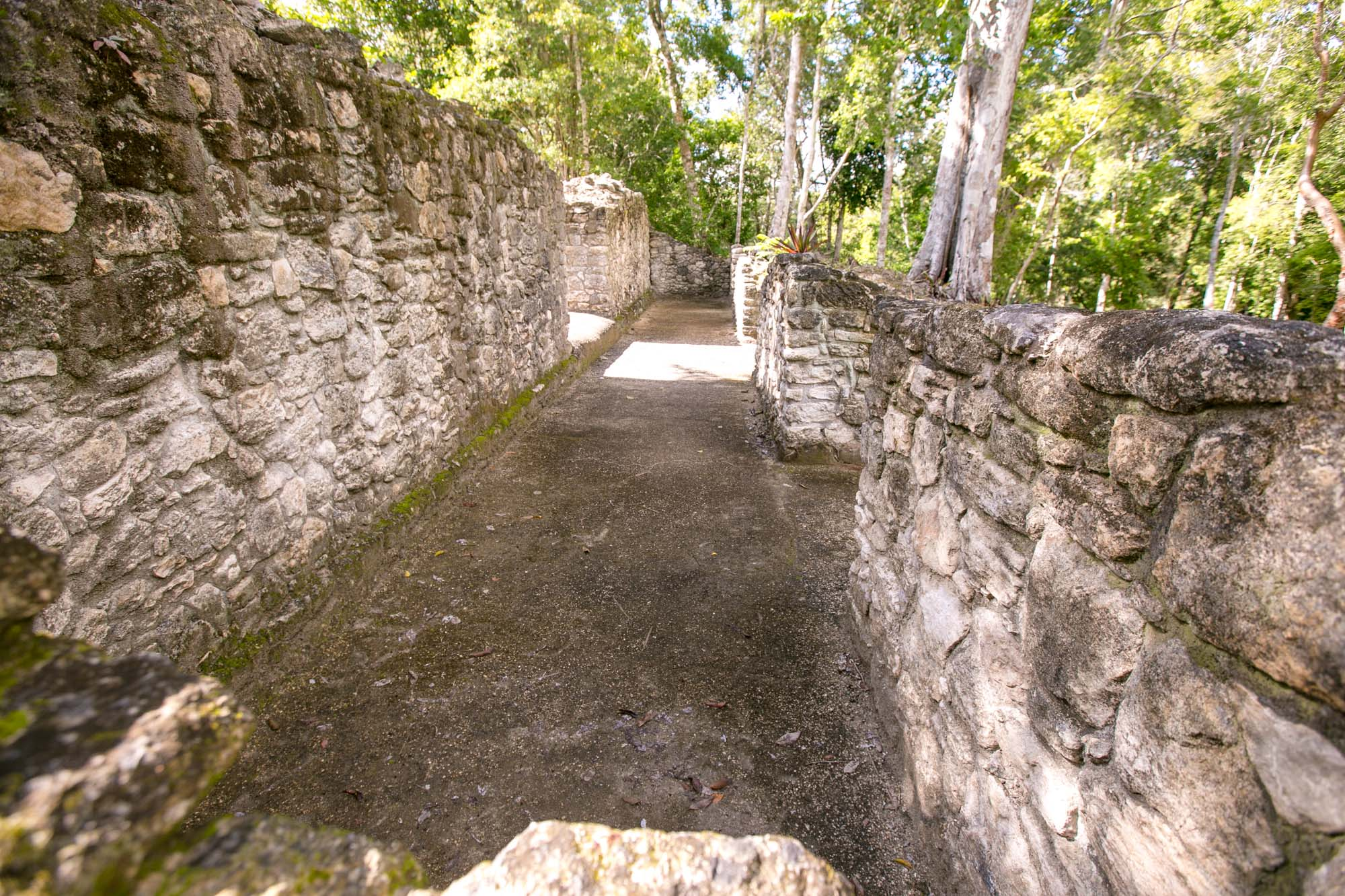 A pathway in the royal house at the Mayan ruins of Dzibanche in Mexico