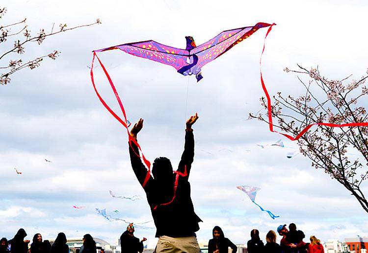 kite launch